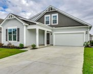 608 Ginger Lily Way, Little River image