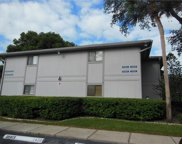 2428 Oak Park Way Unit 202, Orlando image