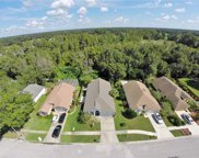 28923 Bay Tree Place, Wesley Chapel image