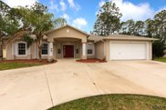 42 Pin Oak Dr, Palm Coast image