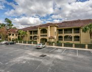2099 WINTERBOURNE Unit 201, Orange Park image