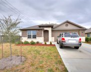 1102 Mitchell Dr, Hutto image