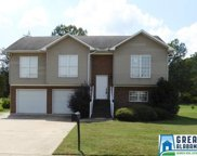 507 Woodhill Cove Dr, Bessemer image