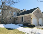 10645 Hollow Tree Road, Orland Park image
