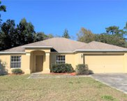12221 Spring Hill Drive, Spring Hill image
