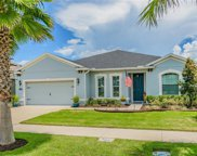 11022 Spring Point Circle, Riverview image