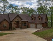 705 Lakeview Crest Dr, Pell City image