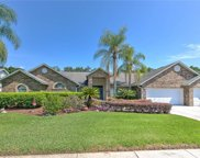 2918 Timber Knoll Drive, Valrico image