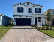 34103 White Fountain Court, Wesley Chapel image