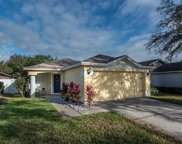 11214 Summer Star Drive, Riverview image
