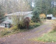 89908 JOHNSON CREEK  RD, Leaburg image