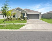 10509 Strawberry Tetra Drive, Riverview image