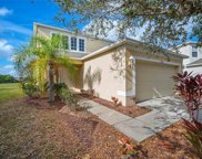 7902 Carriage Pointe Drive, Gibsonton image
