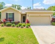 8605 Olive Moss Court, Riverview image