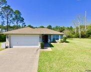 7 Seven Oaks Pl, Palm Coast image
