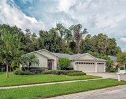 1121 Wyndham Lakes Drive, Odessa image