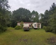 4902 ALLIGATOR BLVD, Middleburg image
