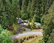 361 Mountain Trail Road, Brinnon image