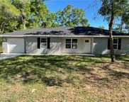 13919 Se 44th Avenue, Summerfield image
