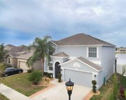 906 Peregrine Hill Place, Ruskin image