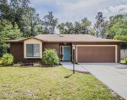 6301 ISLAND FOREST DR, Fleming Island image