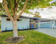 246 Sharon Ave, Rodeo image