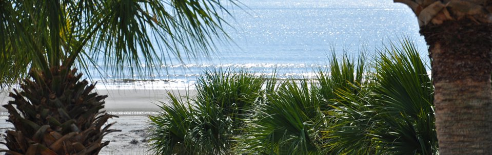 hilton-head-sc-oceanfront-waterfront-homes-villas