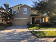 9025 Sienna Moss Lane, Riverview image