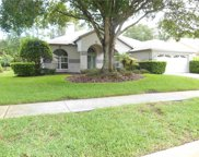 3833 Siena Lane, Palm Harbor image