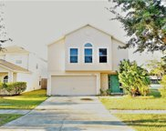 11162 Summer Star Drive, Riverview image