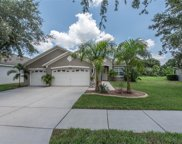 11340 Callaway Pond Drive, Riverview image