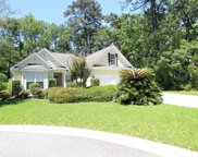 92 Redwing Court, Pawleys Island image