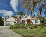 11003 Pine Lilly Place, Lakewood Ranch image