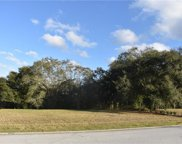 30126 Bretton Loop, Mount Dora image