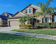 3516 Starling Estates Court, Valrico image