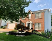 16907 Hickory Forest, Wildwood image