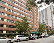 700 West Bittersweet Place Unit 607, Chicago image