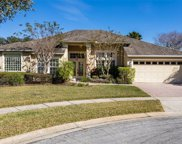 14405 Hatchee Court, Orlando image