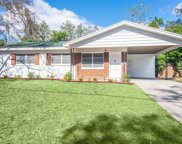 1922 Marvy Avenue, Tampa image