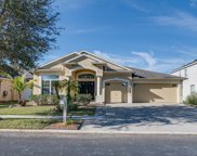 3531 Fortingale Drive, Wesley Chapel image