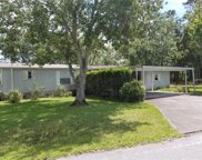 2431 Dora Pines Road, Mount Dora image