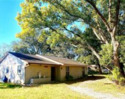 12147 Kent Grove Drive, Spring Hill image