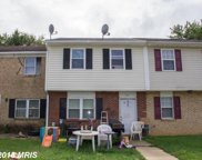 351 WILLOW DRIVE, Elkton image
