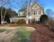 105  Shady Hill Court, Fort Mill image