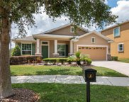 15833 Starling Water Drive, Lithia image