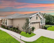 30019 Willow Trace, Mount Dora image