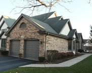 10405 Morningside Court, Orland Park image