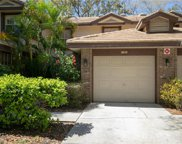 2652 Sequoia Terrace Unit 1302, Palm Harbor image