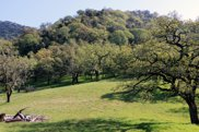 22 Arroyo Sequoia, Carmel image