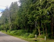 256 Shady Glen Lot 30-32 Ave, Point Roberts image